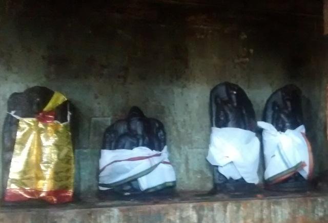 31. Tirukkadaiyur temple- Idols-murtis of Sapta mathas  in veliprakaram RHS.2