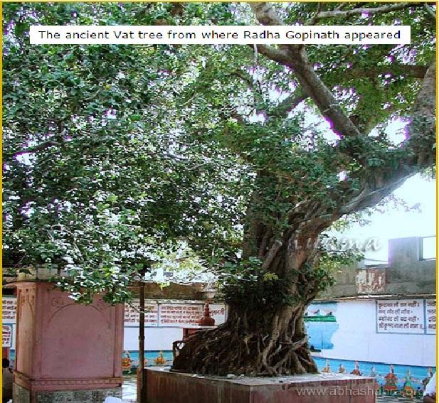 18. பன்ஸிவட் ராஸ ஸ்தல்- அரசமரம் - கோபிநாத் தோன்றிய இடம்