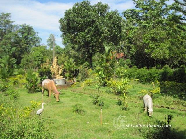Southadka-Shri-Mahaganapathi-Temple-7