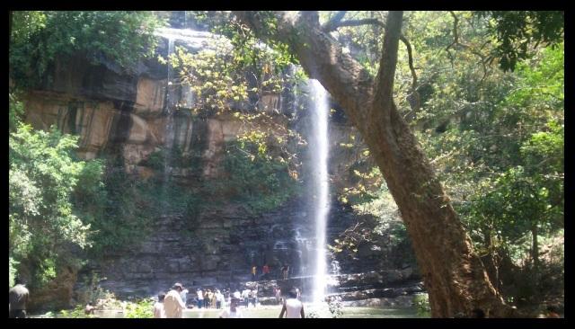 Saleswaram, Linga, Nalammalla forest-water fall-2