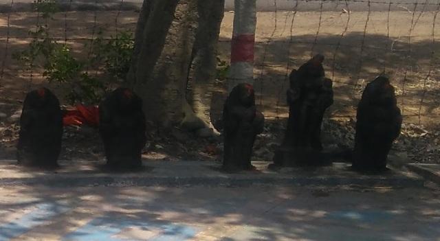Saptamatra temple -LHS, next five idols- 13